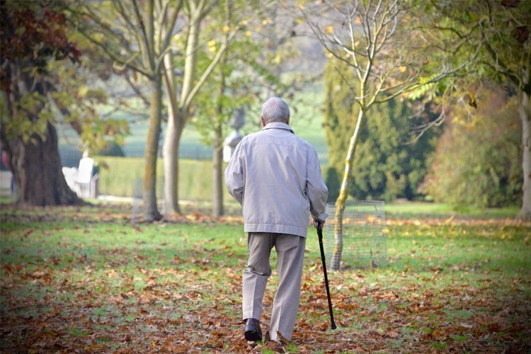 Hobbies That Seniors Can Enjoy While Staying Active